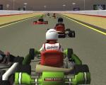 Racing carts 3D